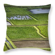 Rice Paddies Throw Pillow