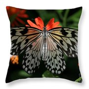Rice Paper Butterfly Elegance Throw Pillow
