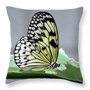 Rice Paper Butterfly On A Leaf Throw Pillow