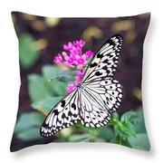 Rice Paper Butterfly Opulent Amenities 2 Throw Pillow