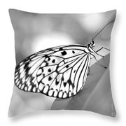 Rice Paper Butterfly Resting For A Second Throw Pillow