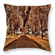 Rice Park Saint Paul Throw Pillow