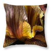 Rich Iris Throw Pillow