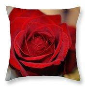 Rich Redness Throw Pillow