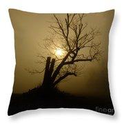 Richmond Park 12 Throw Pillow