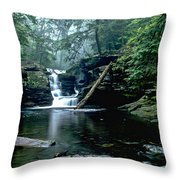 Ricketts Glen Falls 016 Throw Pillow