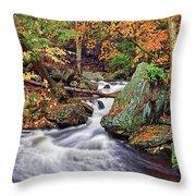 Ricketts Glen Falls Throw Pillow