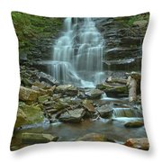 Ricketts Glen Waterfall Canyon Throw Pillow