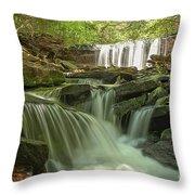 Ricketts Glen Waterfall Cascades Throw Pillow