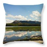 Riddle Lake Throw Pillow