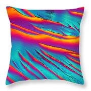 Riders On The Storm Throw Pillow