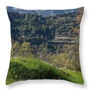 Ridge View Throw Pillow
