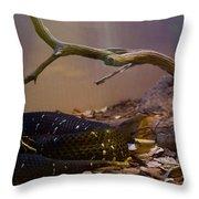Ridgenosed Rattlesnake 3 Throw Pillow