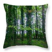 Ridgeway Trees Throw Pillow