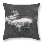 Riding The Bow Throw Pillow by Tony Beck