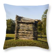 Rifle Tower Ninety Six National Historic Site Throw Pillow