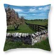 Right Angles Throw Pillow