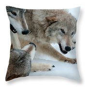 Right Of Passage Throw Pillow