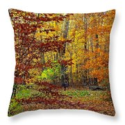 Right Place Right Time Throw Pillow