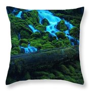 Right Side Of Clearwater Falls Throw Pillow