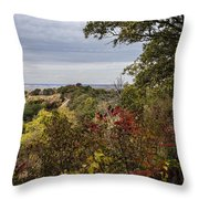 Right To Go Left Throw Pillow