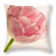 Rilly Frilly II Throw Pillow
