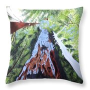 Rim Fire Yosemite  Throw Pillow