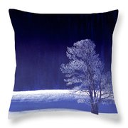 Rime Ice Covered Tree Yellowstone National Park Wyoming Throw Pillow