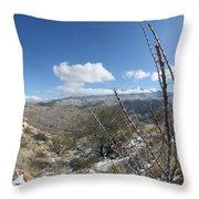Rincon Valley Throw Pillow