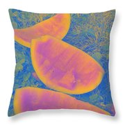 Rind Throw Pillow
