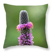 Ring A Ling Throw Pillow