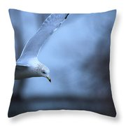 Ring-billed Gull Gliding Portraits 1 Throw Pillow