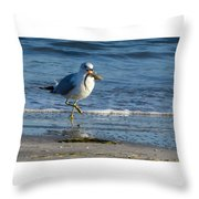 Ring-billed Gull With Its Catch Throw Pillow