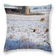 Ring Neck Hens Escape Throw Pillow