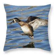 Ring-necked Duck Landing Throw Pillow