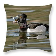 Ring-necked Duck Swallowing Snail Throw Pillow