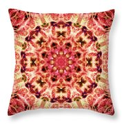 Ring Of Divinity Throw Pillow