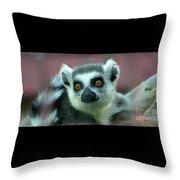 Ring Tailed Lemur-2 Throw Pillow