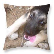 Rio At Home Throw Pillow