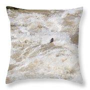 Rio Grande Kayaking Throw Pillow