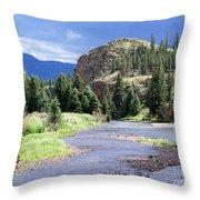Rio Grande River Landscape Throw Pillow