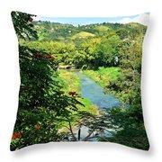 Rio La Plata Cayey 5698 Throw Pillow