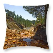 Rio Tinto Mines, Huelva Province Throw Pillow
