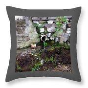 R.i.p. Nature Throw Pillow