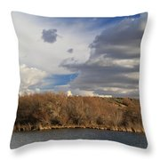 Riparian Zone Snake River Throw Pillow