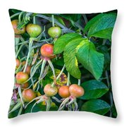 Ripe And Ready Throw Pillow