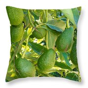Ripe Avocado Fruits Growing On Tree As Crop Throw Pillow