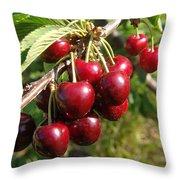 Ripe Cherries Throw Pillow