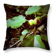 Ripe Figs Throw Pillow