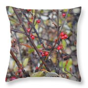 Ripe For The Picking Throw Pillow